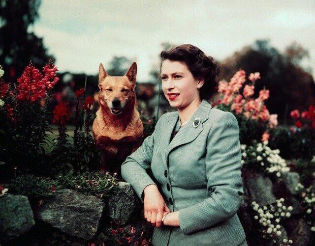Исторические моменты в цвете (25 фото)