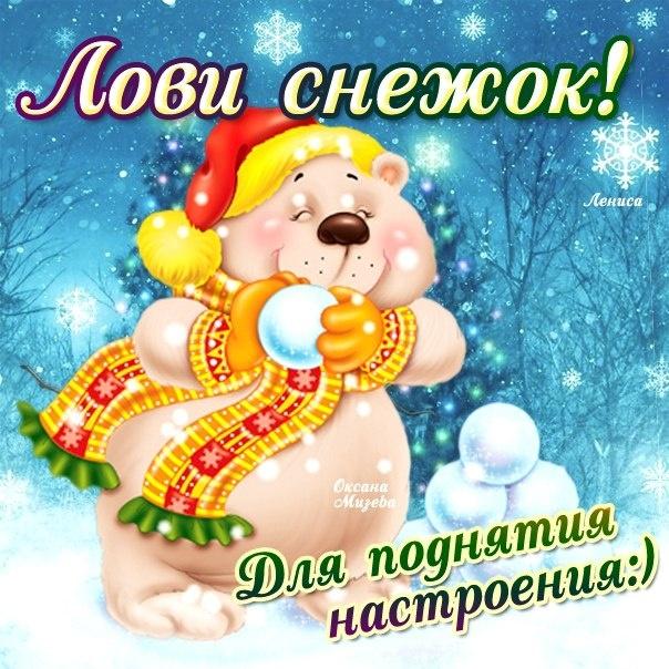 Новогодняя открытка - Лови снежок