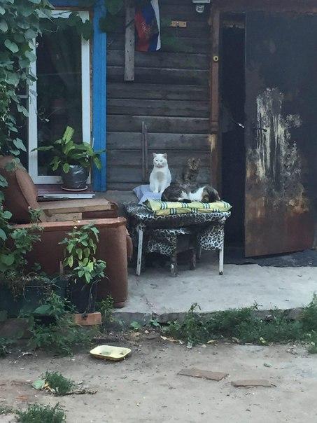 Это разве Россия?! Как я съездил в Саратов