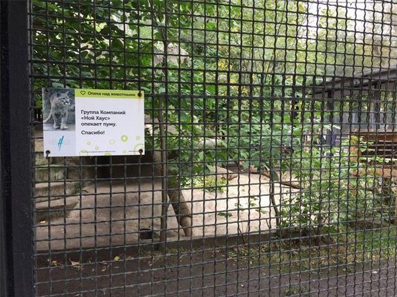 Как я в зоопарк сходил