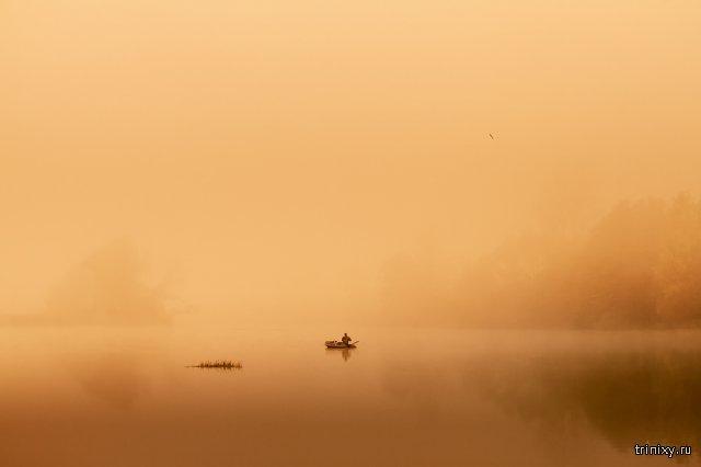 Природа Беларуси