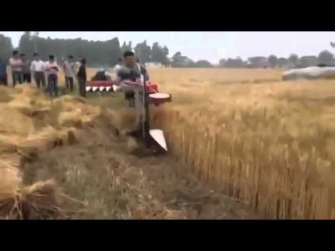 КИТАЙСКИЙ КОМБАИН