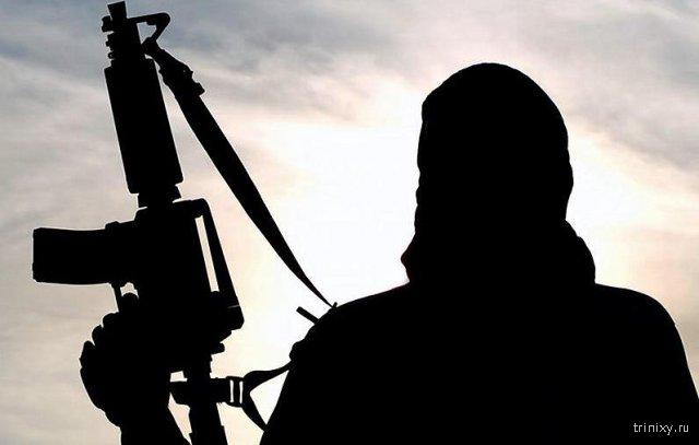 Новые казни ИГИЛ: зачем они это делают?