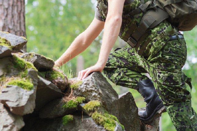 На Камчатке найден дезертир, скрывавшийся 11 лет в лесу