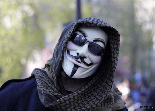 «Диванные войска» призваны важной составляющей общественных протестов