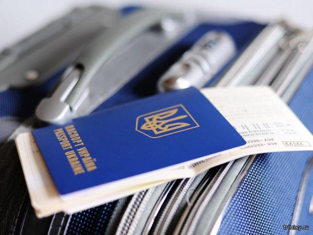 Украина и Грузия получат безвизовый режим с ЕС к середине 2016 года