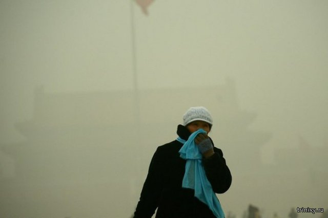 Китай вынужден покупать свежий воздух у Канады