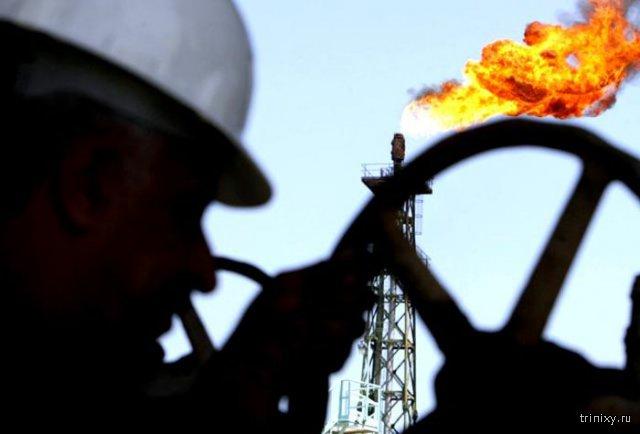 Цена нефти Brent упала до рекорда за 11 лет