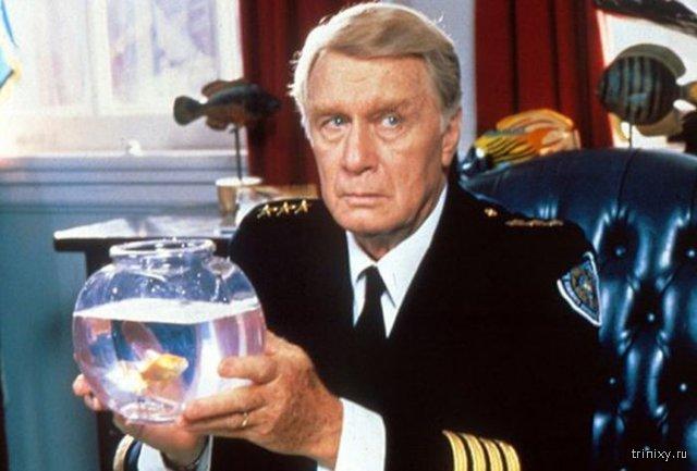 Джордж Гейнс, сыгравший ректора Лассарда в «Полицейской академии», скончался в возрасте 98 лет