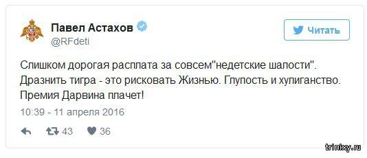 Павел Астахов сказал, что по пострадавшей от тигра девочке «плачет премия Дарвина»