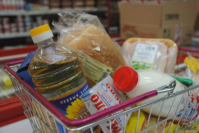 Граждане России тратят более половины доходов на покупку продуктов питания