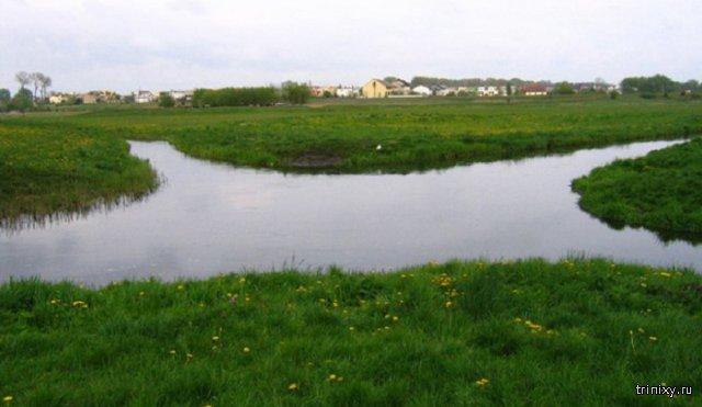 Удивительные реки, которые пересекаются под прямым углом, но вода в них не смешивается