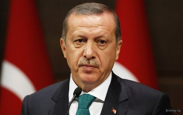 Эрдоган извинился за сбитый Су-24