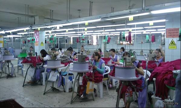 Северокорейская рабочая сила Монголии