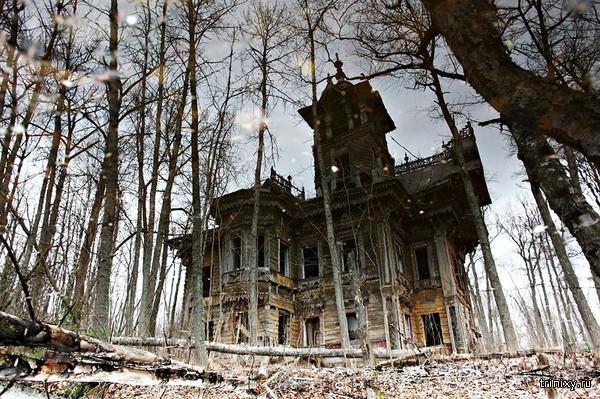 Лесной терем под Костромой