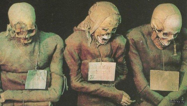 Катакомбы капуцинов: тысячи мумий в одной из главных достопримечательностей