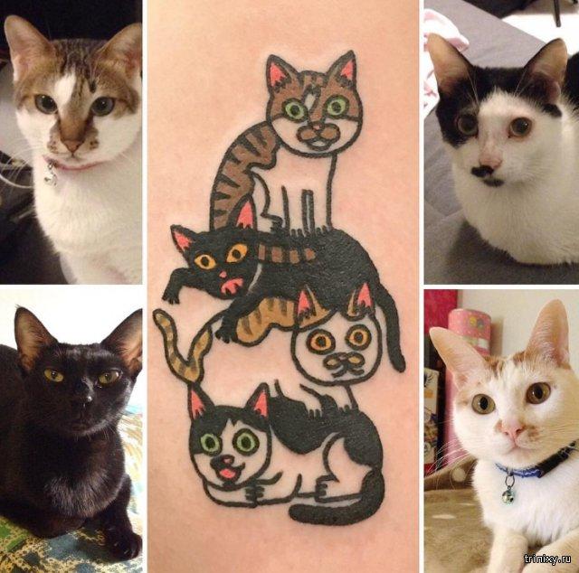 Забавные татуировки животных от корейского мастера