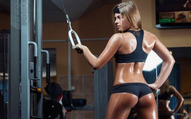 Видео горячие девушки в фитнес зале фото 781-555