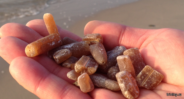 Необычные камни на Балтийском побережье
