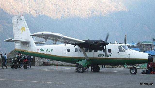 В Непале леопард вышел на ВПП, чем нарушил работу аэропорта