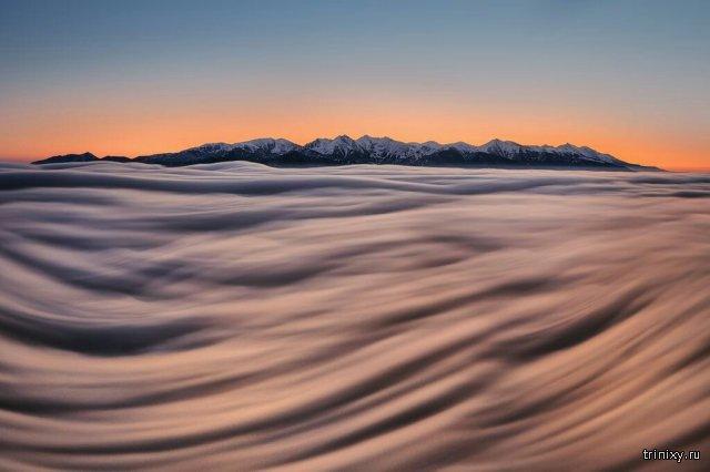Лучшие фотографии National Geographic за март 2017 года