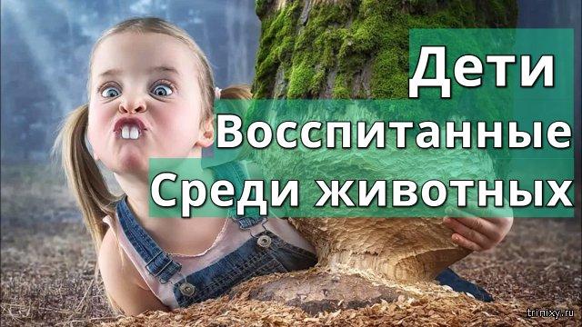 Дети воспитанные среди животных