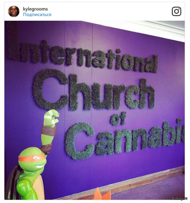 Церковь конопли в американском городе Денвер
