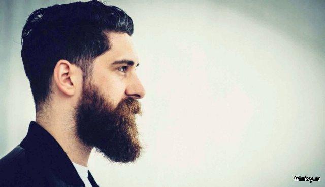 ТОП 6 причин по которым женщины без ума от «бородачей»