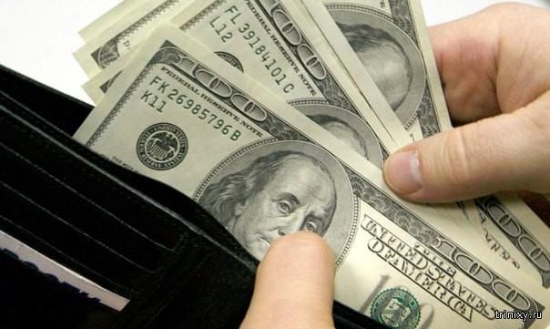 Какие вредители живут на денежных купюрах