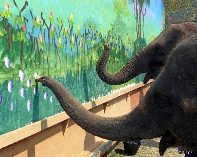 Интересные факты о животных и природе