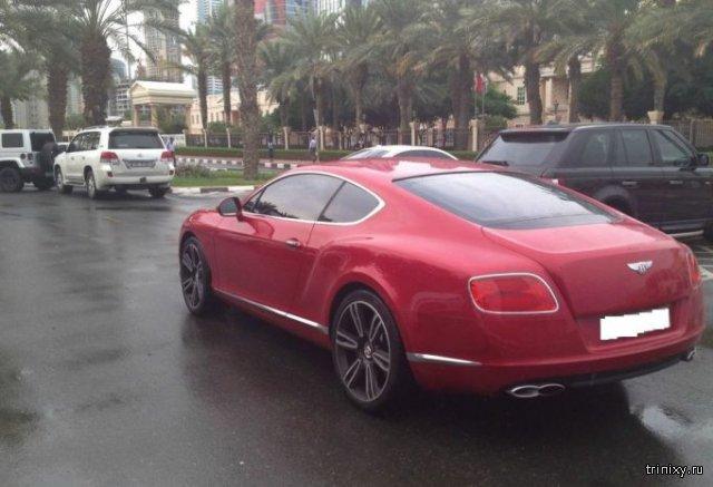 Автомобили на студенческой парковке в Дубае