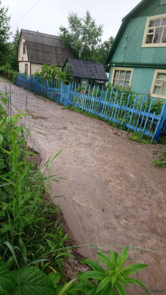 Сухая речка больше не сухая.