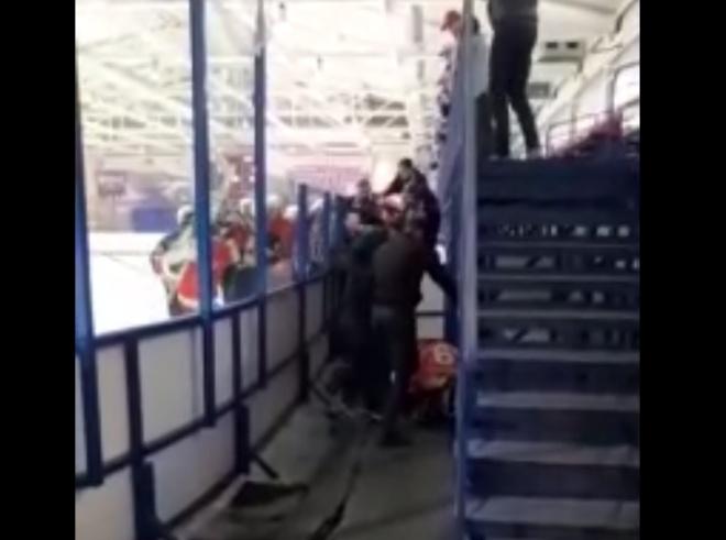 В Новосибирске хоккейные болельщики подрались с игроком