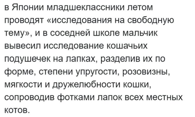 Россиянка живёт в Японии и рассказывает об интересных особенностях страны