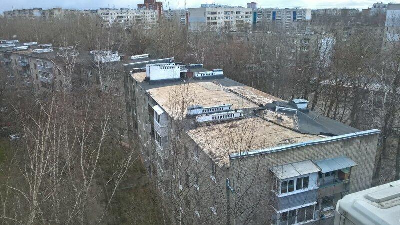Ураган в Ярославле повалил деревья, сломал светофоры и вырвал остановки
