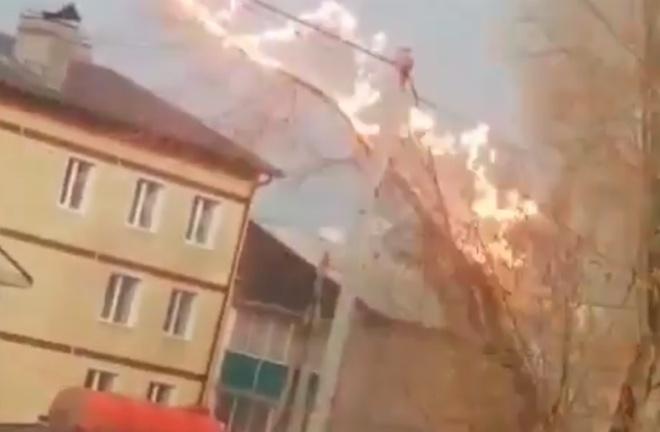 Завораживающее видео - электричество против дерева