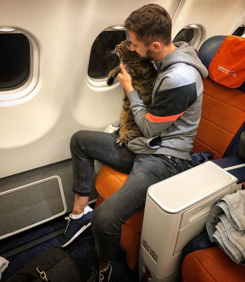 На что ты пойдешь, чтобы твою киску пустили в самолет?