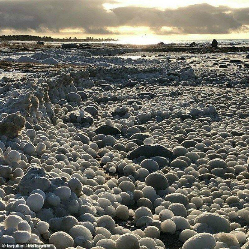 Пляж в Финляндии завалило «ледяными яйцами»