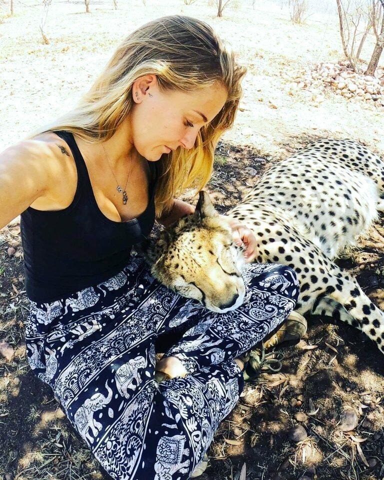 Красавица свободное время проводит с гепардами