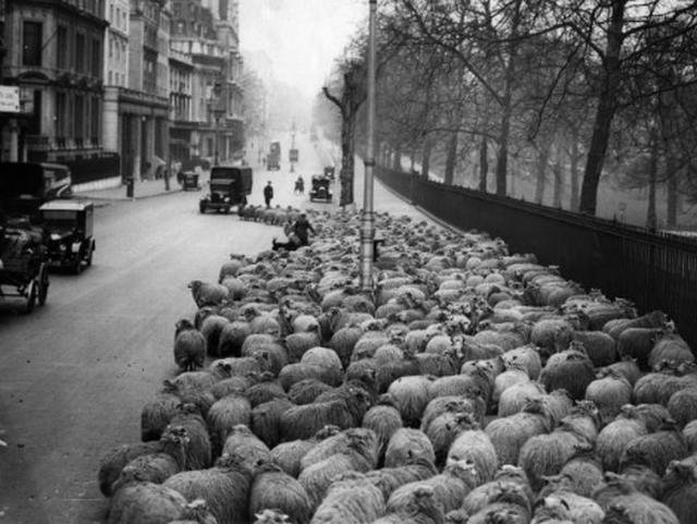 Подборка исторических снимков, которые показывают людей не с лучшей стороны