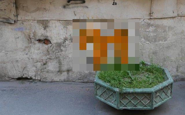 Во дворах Петербурга появились странные рисунки