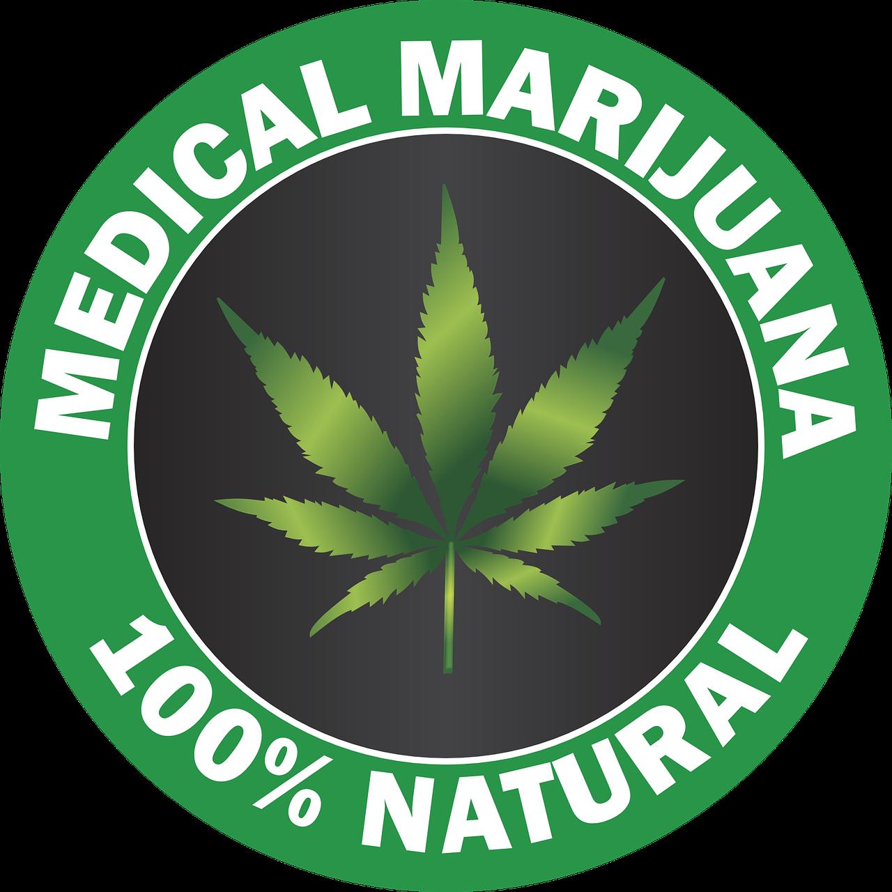 Вакансия мечты: дегустатор марихуаны будет получать по три тысячи долларов в месяц