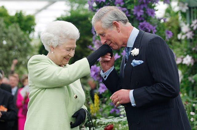 Королева Елизавета II может покинуть британский трон к своему 95-летию.