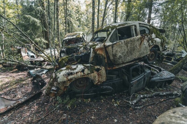 Кладбище ретро-автомобилей в лесу Швеции