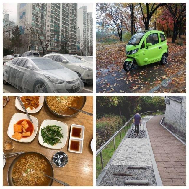 Интересные факты о жизни в Южной Корее