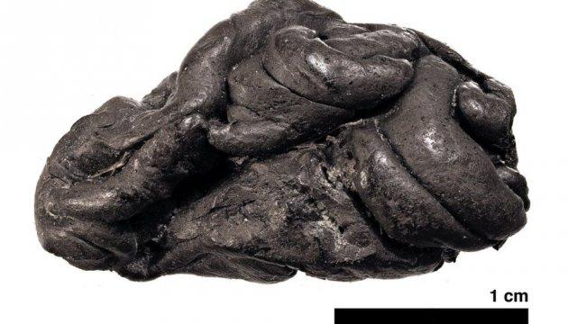 Посмотрите, как выглядела женщина, жившая 5700 лет назад