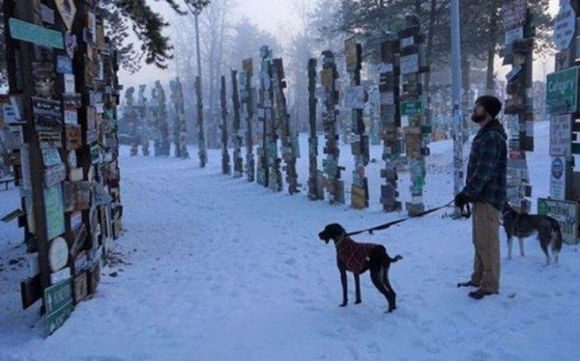 90 000 дорожных знаков в одном из лесов Канады