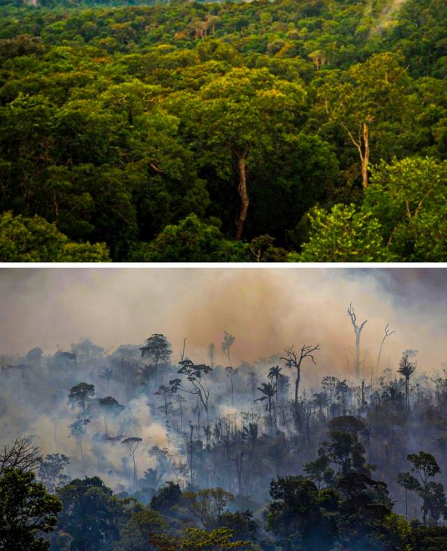 Az éghajlatváltozás hatása a bolygóra