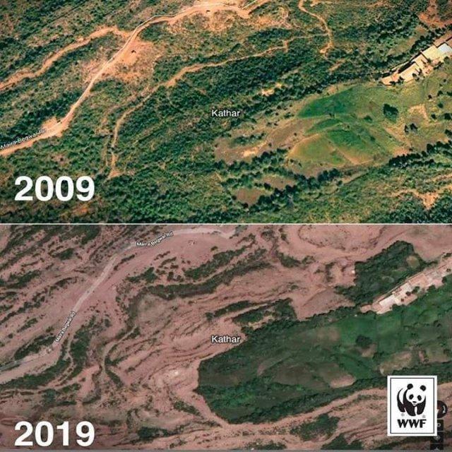 Последствия от изменений климата на планете