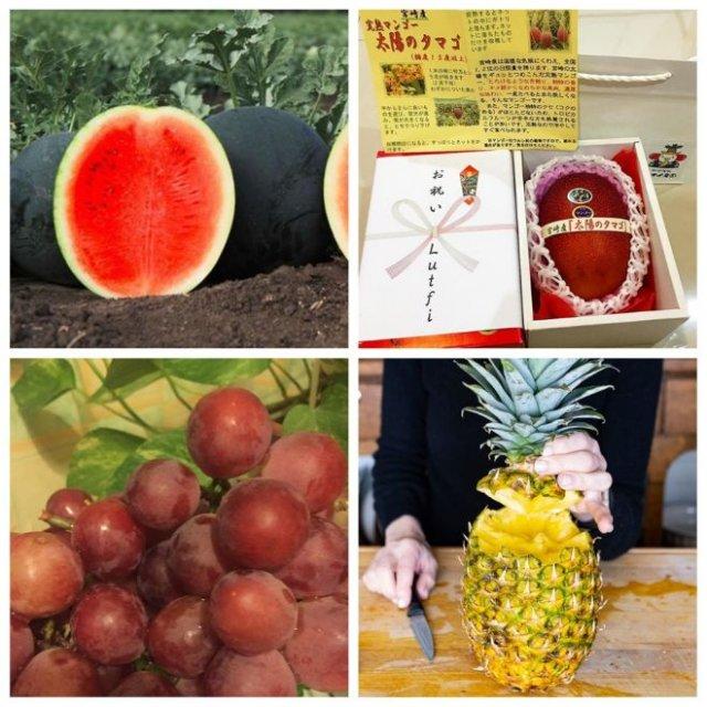 Самые дорогие фрукты в мире (7 фото)